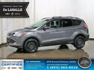 2013 Ford Escape SE TA Very Well Maintained, No Stories..!