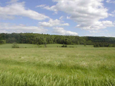 93  Acres Lake George Ny Subdividable 10 Lots Adirondacks Commercial Residential