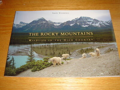 The Rocky Mountains Wildlife In The High Country Shin Yoshino Chronicle 1st Pape