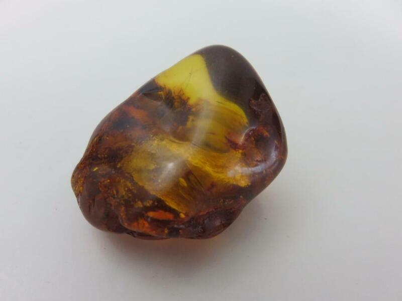 Genuine Natural Baltic Amber Latvia Rich Color Fossil Inclusion 11.9 grams