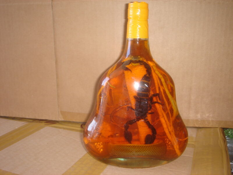 """real cobra snake and a scorpion in a large X O glass bottle 9"""" tall"""