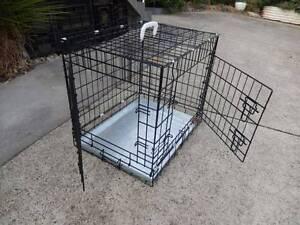 Dog create Newnham Launceston Area Preview