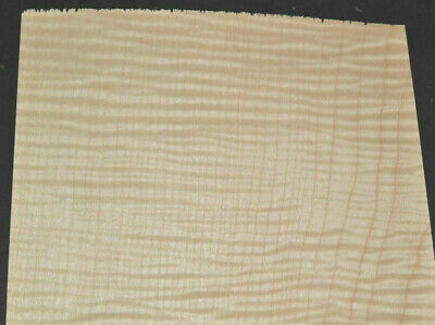 Pair Of Curly Maple Raw Wood Veneer Sheets 8 X 18 Inches 142nd  4712-30