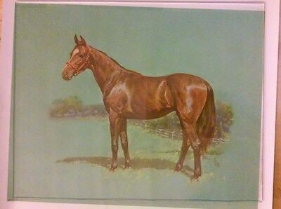 LOT 2 DIFFERENT   9X11 VTG 1961 HORSE LITHO  PRINTS