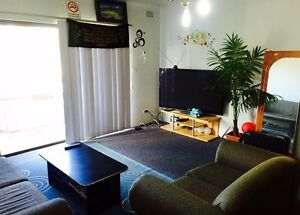 BEAUTIFUL UNIT TO SHARE FOR COUPLE OR FEMALE Lakemba Canterbury Area Preview