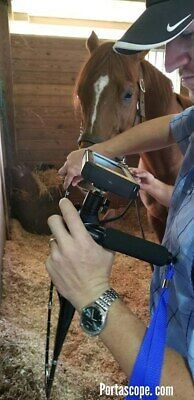 Veterinary Airway Equine Horse Video Endoscope Monitor Field Scope 9.5mm 150cm