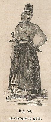 A1657 Giavanese in gala - Xilografia - Stampa Antica del 1895 - Engraving