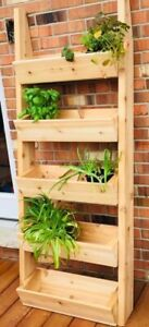 Cedar plant and herb boxed ladder