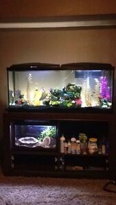 55Gallon Tank and Stand