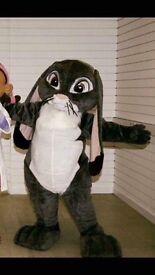 Mascots characters x6 x2 dresses