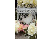 White Dove Release - Weddings / Funerals / Celebrations - South Wales