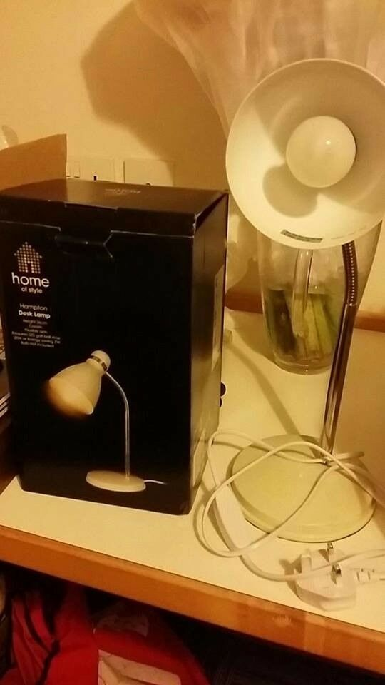 Desk Lamp with energy saving bulb