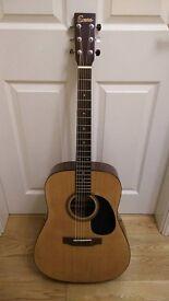 Acoustic Dreadnought Guitar