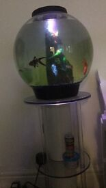 30 litre Biorb with stand and led mood lighting with remote