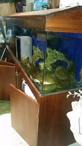 Aquarium 6x2x2 Full setup fish tank ( sold ) waiting pickup Green Valley Liverpool Area Preview