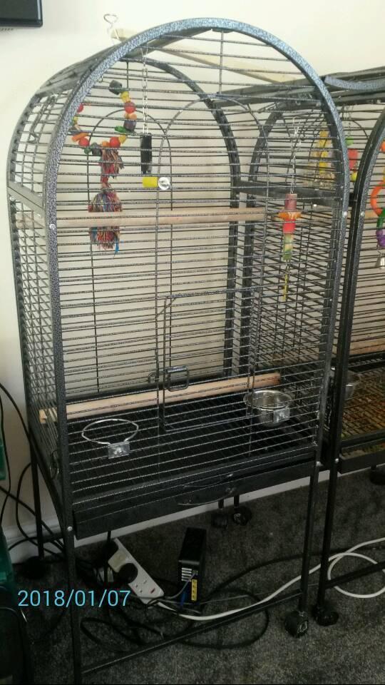 Bird cage / parrot