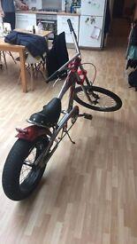 Sting Ray Chopper Bike Bicycle
