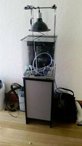 AquaNano 36 Complete Marine Glass Aquarium 30L 36cm West Moonah Glenorchy Area Preview
