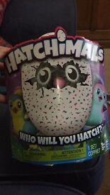 Hatchimals Hatchimal Teal egg