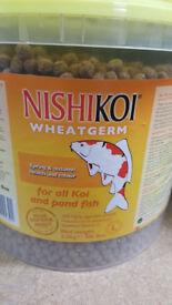 Nishi koi food - past bbe