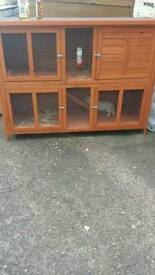 Rabbit & hutch for sale