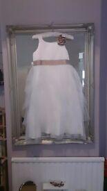 BNWT Ivory/Bronze Bridesmaid dresses