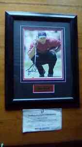Tiger Woods Hand Signed Framed Photo 8x10 Memorabilia Golf Sport Huntfield Heights Morphett Vale Area Preview
