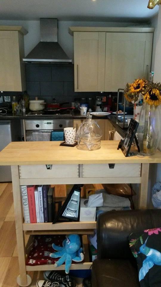 Ikea FÖrhÖja Kitchen Trolley Birch Size 100x43 Cm