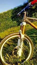 Custom built bike GT -price is negotiable-