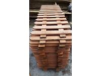 Pointed picket fencing 6ftx2ft