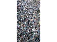 Garden gravel free for pickup