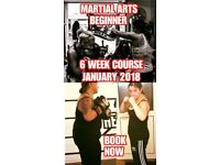 MARTIAL ARTS BEGINNER COURSE JANUARY 2018