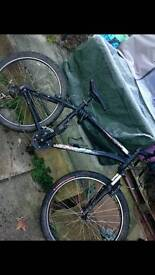 Specialized hardrock *Limited Edition*