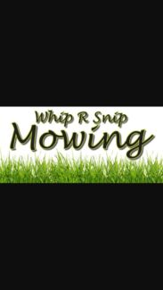 Iawn moving& gardening with cheap rates  Dickson North Canberra Preview