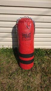 50L punching bag