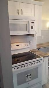 Gorgeous Fully Renovated Rental New Appliances Internet Tv INCL