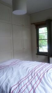 Beautiful light filled room to rent Griffith South Canberra Preview