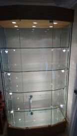 Pair of oak and glass display cabinets with professional lighting