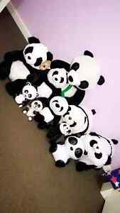 Panda plush toy's,  money box , Ipod dock Craigieburn Hume Area Preview