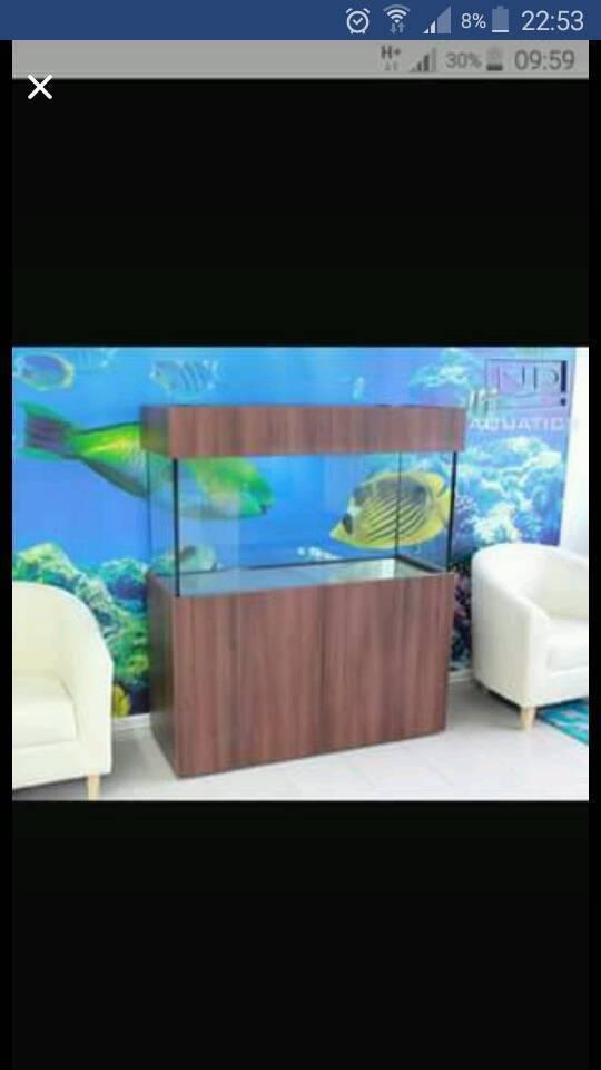 Phoenix Seashell Fish Tank RRP £500