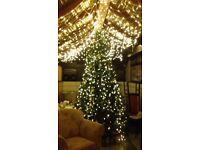 10ft christmas tree