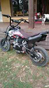 Honda crf 50 Paterson Dungog Area Preview