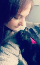 *Worked with SSPCA* Experienced, friendly, reliable pet-sitter and walker newly available!