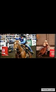 Corleen and Rene LeClercq Clinic