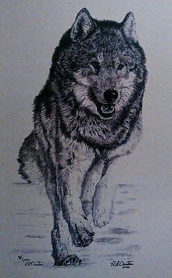 Wolf drawing, Animals, Pencil, Graphite, Artist, Artwork Reproduction