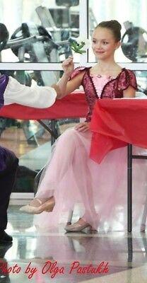 Ballet Dance Costume Princess Halloween Ballroom Waltz Tutu Pink Burgundy 14y - Ballroom Dance Halloween Costume