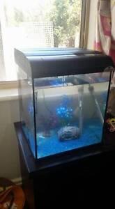 30Ltr fish aquarium and accessories Wundowie Northam Area Preview
