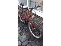 Raleigh M Trax bike
