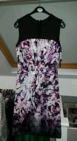 Brand new coast dress size 6