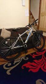 Apollo Phaze Mountain Bike - Offers